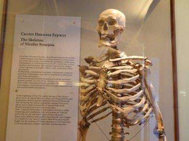 Esqueleto de un gigante